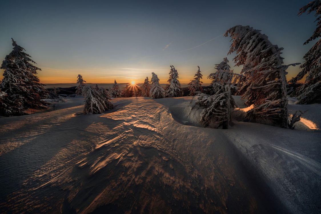 Фото бесплатно зима, закат солнца, солнечные лучи, сумерки, снег, деревья, сугробы, природа, пейзаж, пейзажи