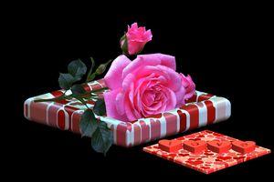 Фото бесплатно Поздравления с днем Святого Валентина, открытка, роза цветок, сердечки, праздники