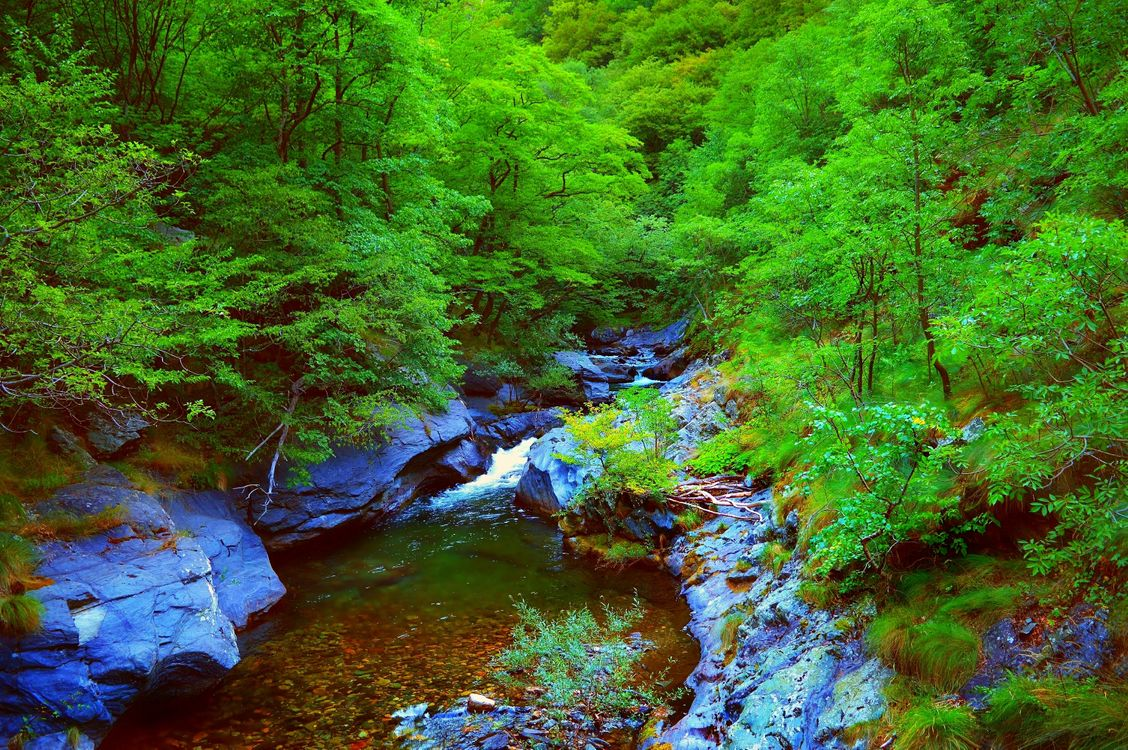 Фото бесплатно магическая река, лес, камни - на рабочий стол