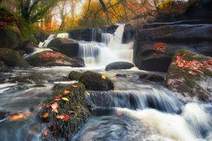 Заставки осенние краски, поток, река