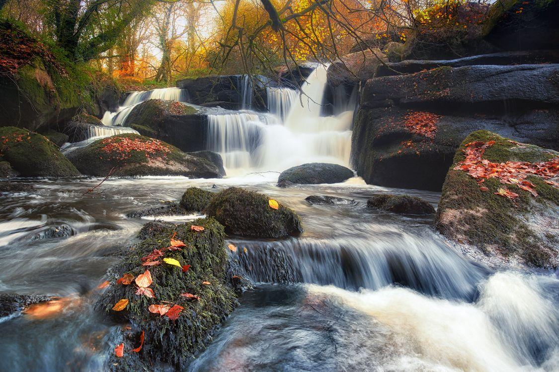 Фото бесплатно осенние краски, поток, река - на рабочий стол