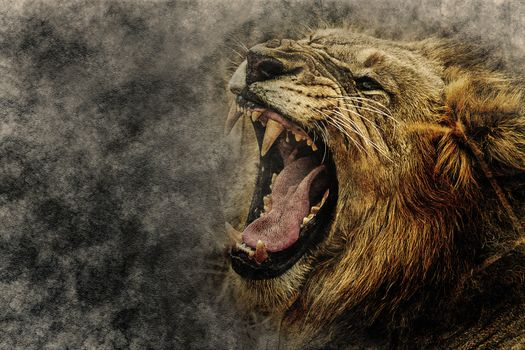 Заставки животное, хищник, клыки