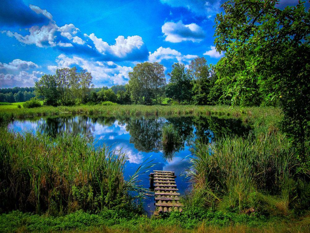 Фото бесплатно озеро, пруд, мостик, деревья, небо, облака, трава, растения, природа, пейзаж, пейзажи