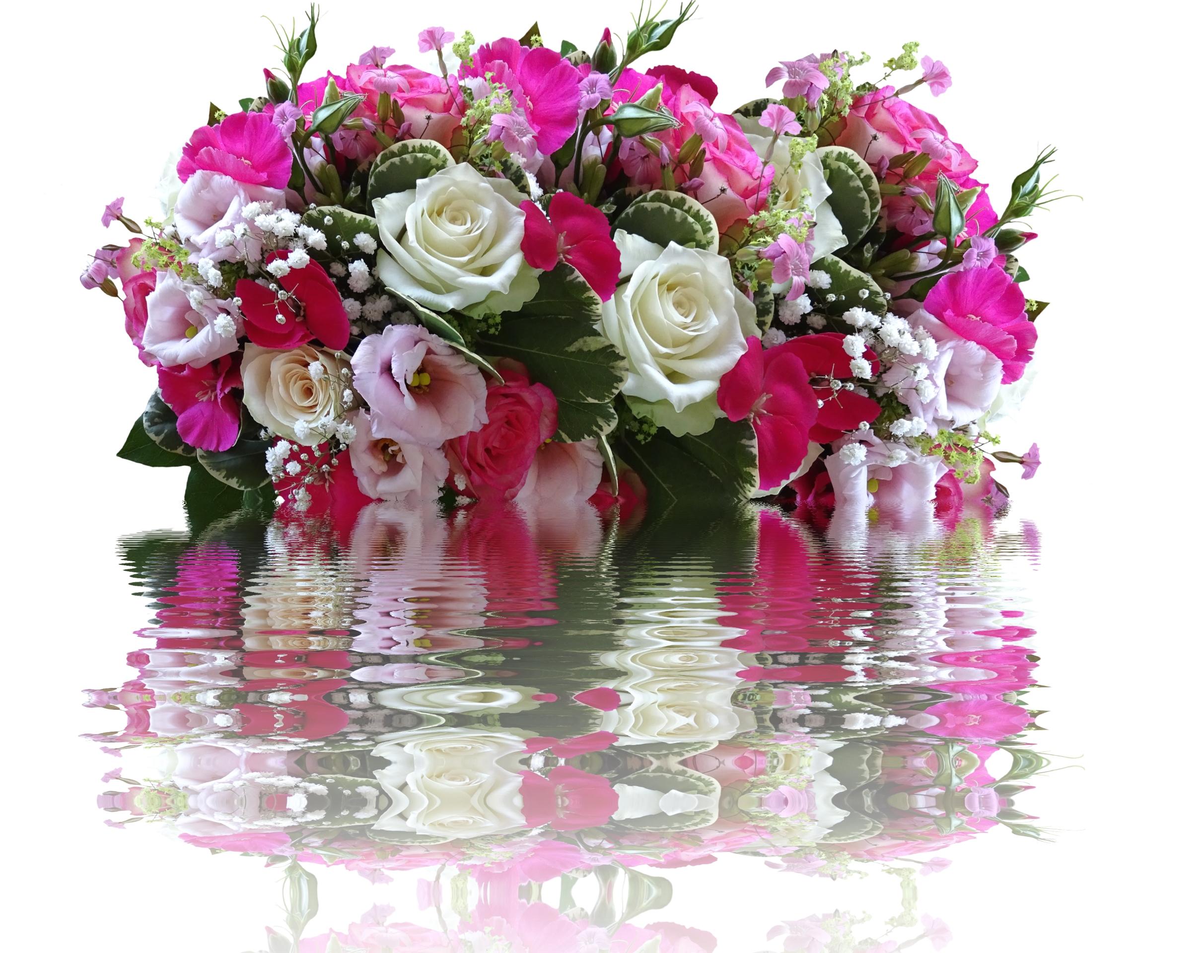 Красивые открытки живые цветы