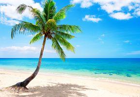 Заставки пляж, синий, побережье