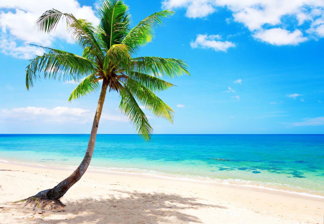 Фото бесплатно пляж, синий, побережье - на рабочий стол