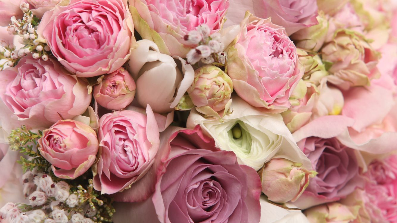 Photos for free beautiful bouquet, floral bouquet, cool - to the desktop