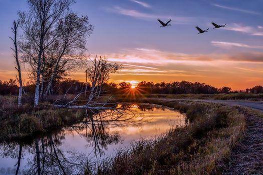 Фото бесплатно закат, на свежем воздухе, природа