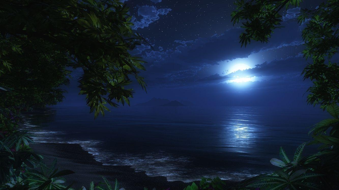 Фото бесплатно ночь, океан, луна - на рабочий стол