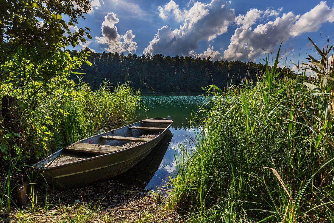 Фото бесплатно озеро, лодка, тростник, берег, лес, облака, природа, пейзаж, пейзажи