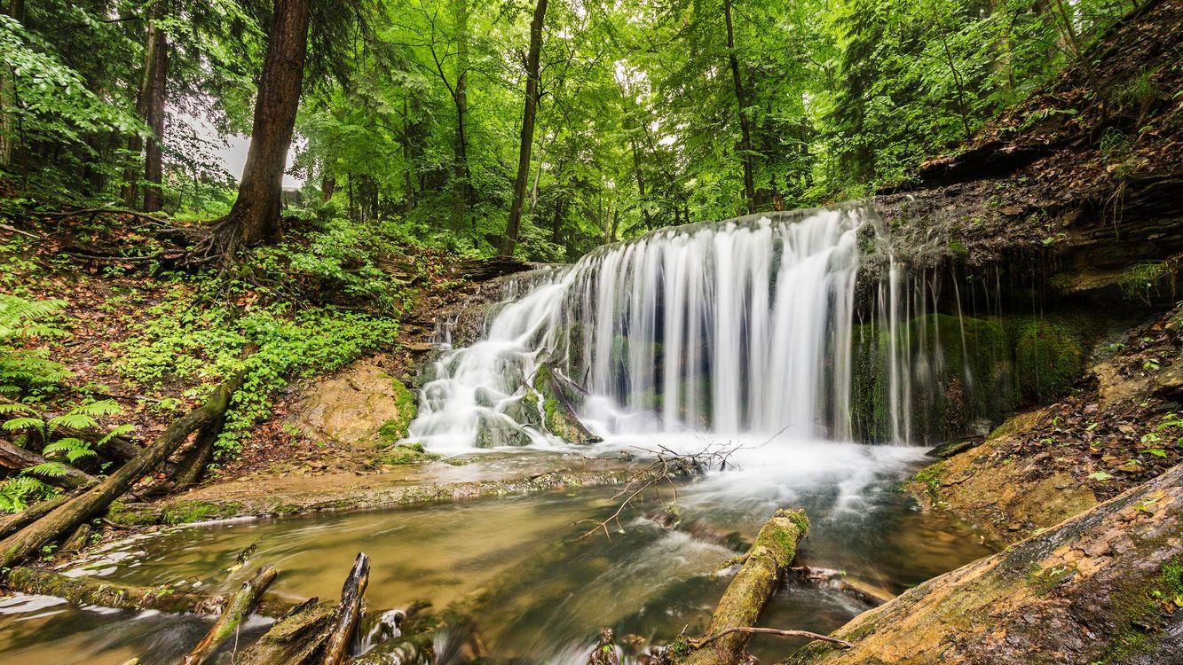 Фото бесплатно Weavers Creek Falls, Harrison Park, Оуэн-Саунд, Онтарио, Канада, водопад, река, деревья, пейзаж, природа