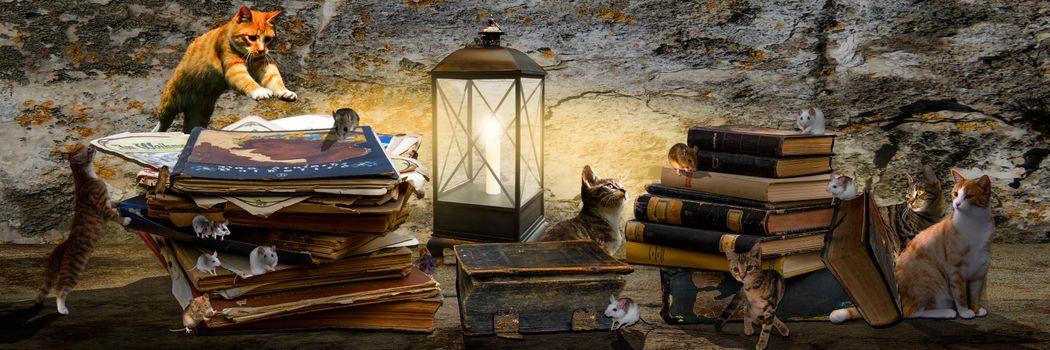 Бесплатные фото кошки,мышки,панорама,фантазия,фотошоп,лампа,книги,игра,охота,art