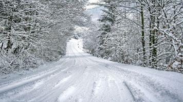 Бесплатные фото зима,дорога,снег,лес,деревья,пейзаж