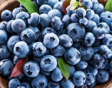 Many ripe blueberries