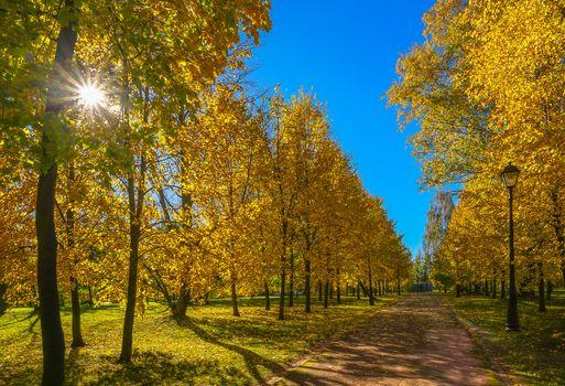 Фото бесплатно Россия, пейзаж, октябрь летом