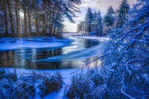 Бесплатные фото зима,река,лёд,ледяной,домик,деревья,снег