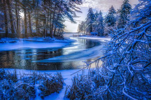 Бесплатные фото зима,река,лёд,ледяной,домик,деревья,снег,обледенелые ветки,вода,лес,камыш,природа