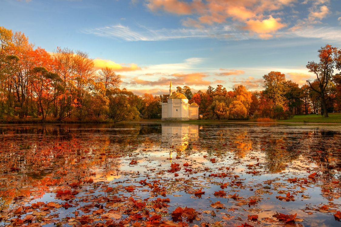 Фото бесплатно озеро, закат, осенние листья - на рабочий стол