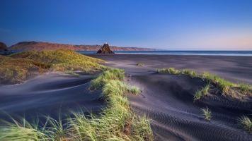 Заставки пляжи, побережье, трава