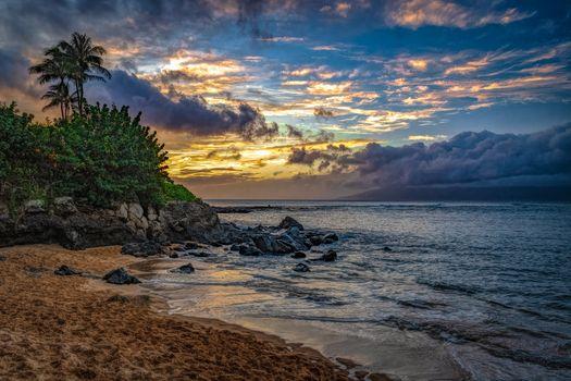Бесплатные фото Остров Молокаи,Maui,Гавайи,Kapalua Beach,остров,пляж,закат солнца,море,пальмы,волны,берег,песок