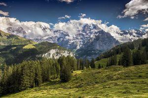 Фото бесплатно Швейцария, горы, лес