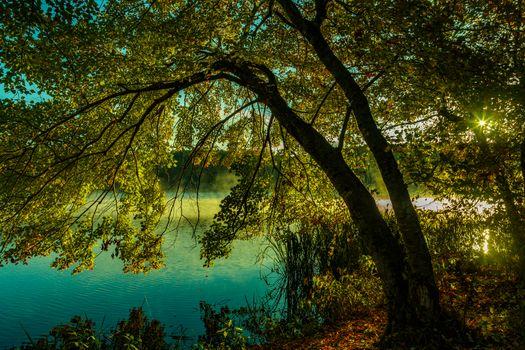 Бесплатные фото закат,осень,дерево,озеро,природа,пейзаж