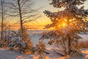 Бесплатные фото Losevo,Russia,Ленинградская область,зима,закат,снег,сугробы