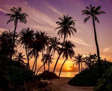 Заставки Maldives, море, закат
