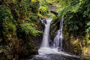 Арочный мост и водопад в лесу