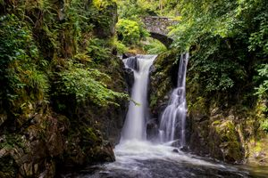 Arched bridge and waterfall in the forest · free photo