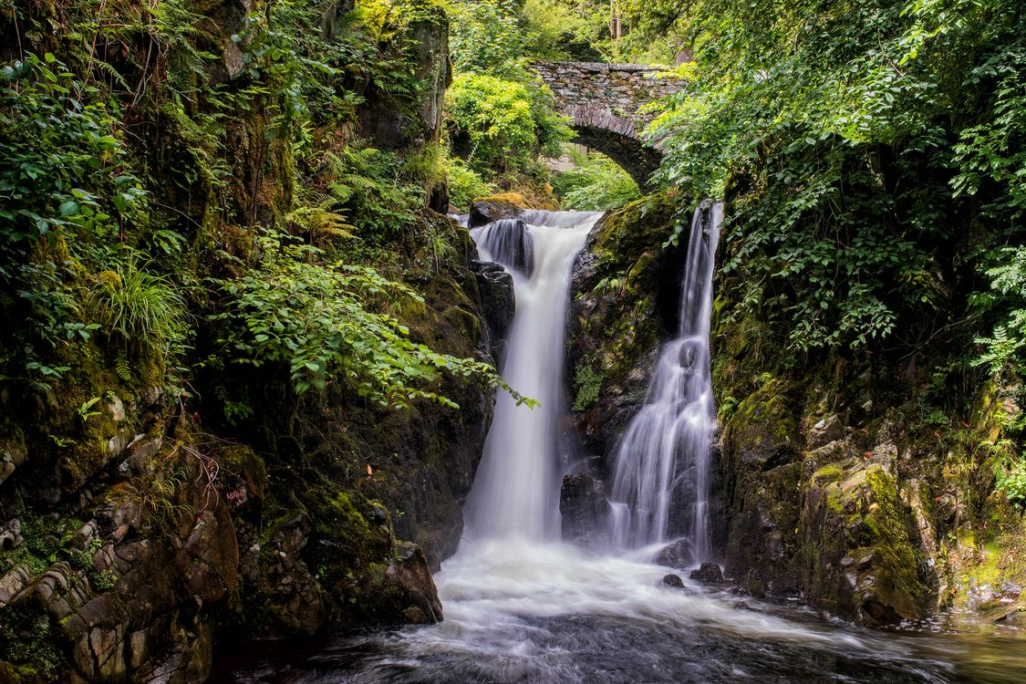 Арочный мост и водопад в лесу · бесплатное фото