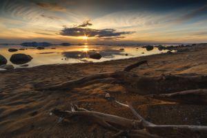 Закат на берегу Рыбинского водохранилища · бесплатное фото