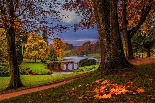 Фото бесплатно река, деревья, ходить