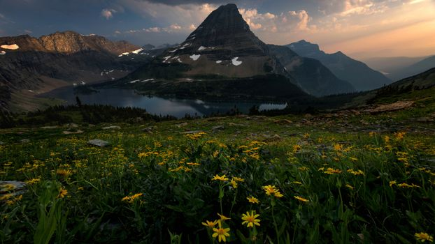 Flowers and mountains · free photo