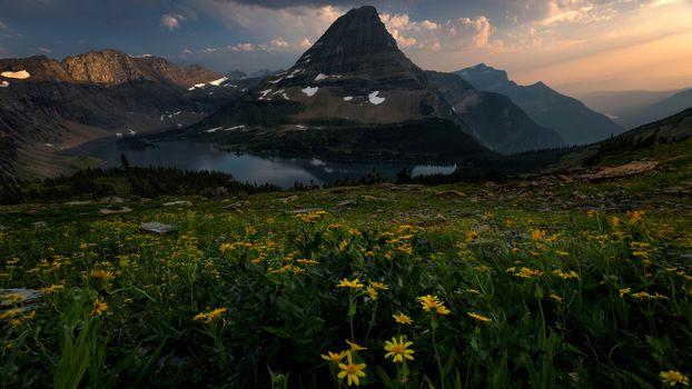 Цветы и горы · бесплатное фото