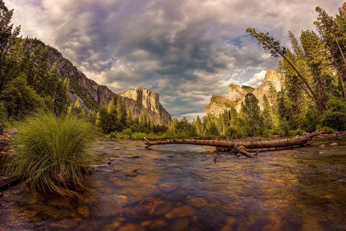 Река в Калифорнии · бесплатное фото