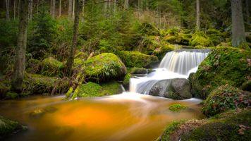 Фото бесплатно водопады, деревья, водопад