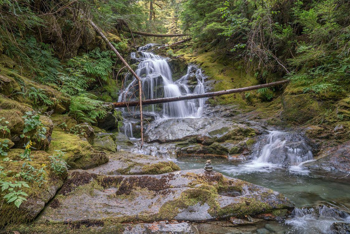 Фото бесплатно лес, скалы, водопад, камни, деревья, природа, пейзаж, пейзажи