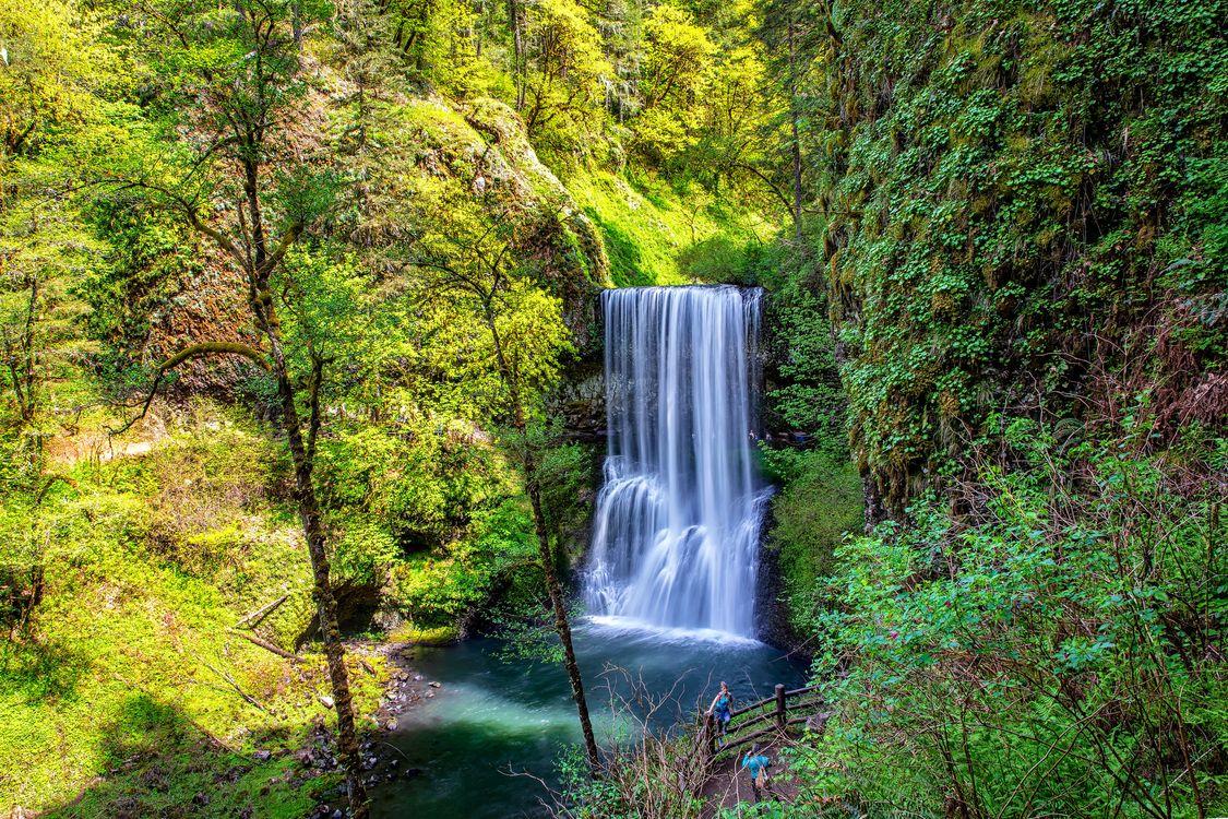 Фото бесплатно лес, водопад, скалы, деревья, водоём, природа, пейзаж, пейзажи