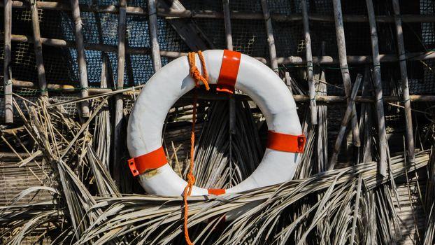 Photo free lifebuoy, rope, forest