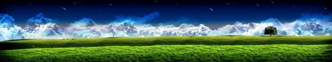 Фото бесплатно простор, поле, дерево