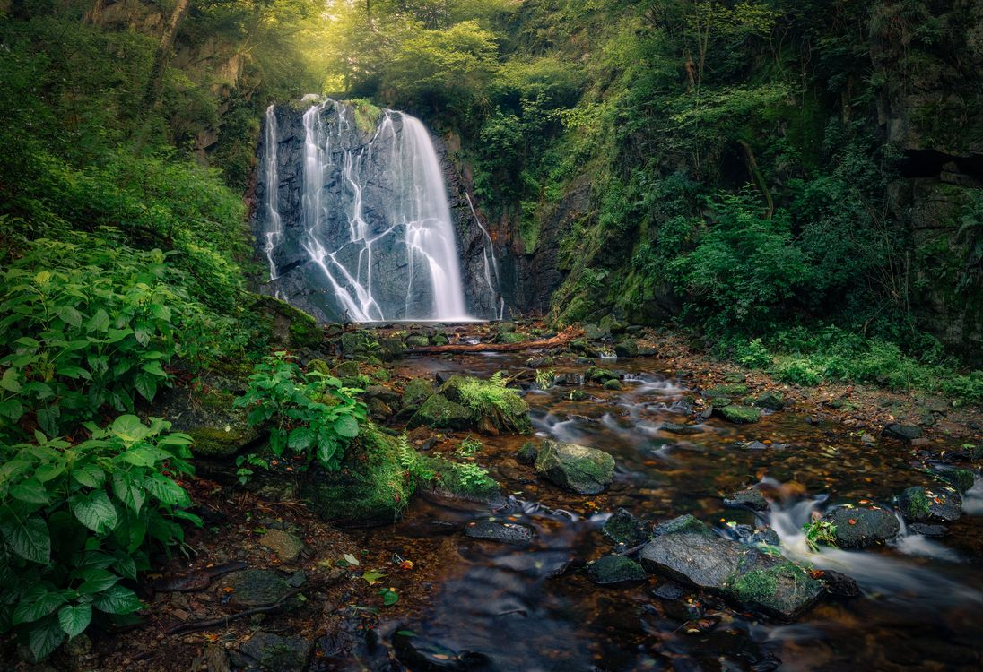 Free photo A hidden cascade on the border of Switzerland and Italy, waterfall, forest - to desktop
