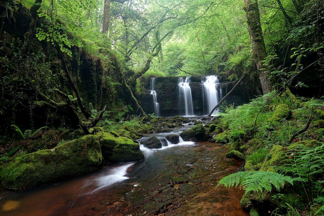 Фото бесплатно река, вода, природа - на рабочий стол