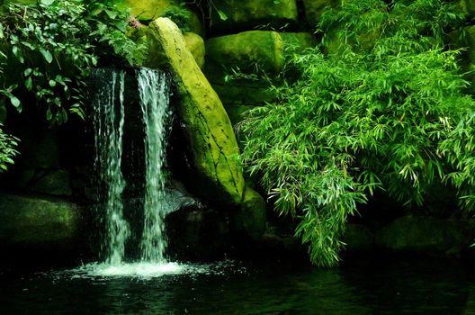 Бесплатные фото водоём,водопад,камни,ветки,зелёный,поток,природа
