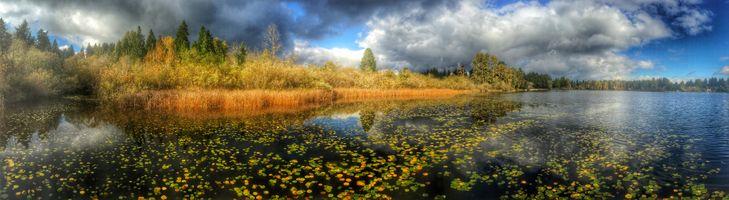 Фото бесплатно осень, озеро, небо