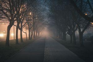 Заставки dawn, evening, fog