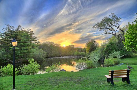 Бесплатные фото закат,пруд,парк,деревья,красивое небо,скамья,облака,скамейка,фонарь,пейзаж