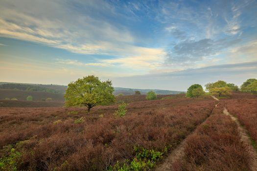 Photo free countryside, landscape, field