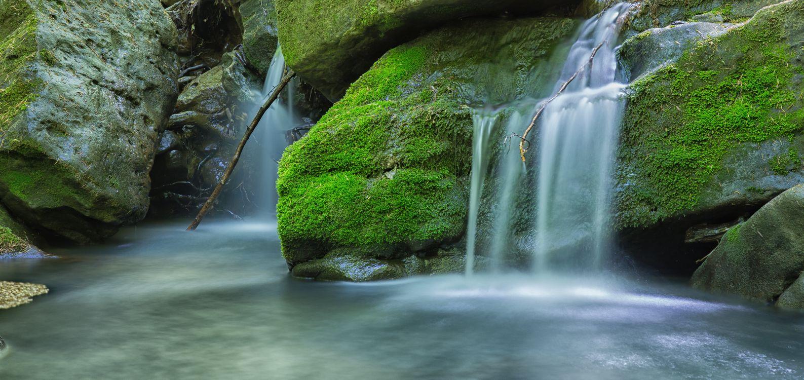 Обои мшистый лес мох, скалы, водопад картинки на телефон