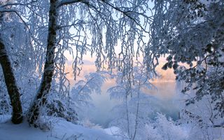 Фото бесплатно зима, снег, озеро, деревья, иней, закат, природа, пейзаж